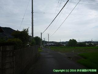 74-007香川県善通寺市