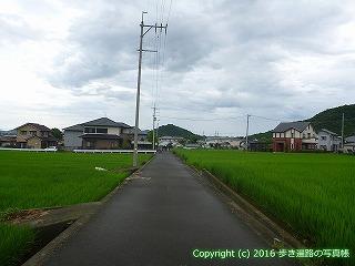 74-009香川県善通寺市