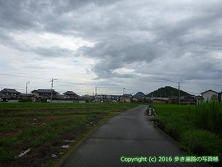 74-013香川県善通寺市