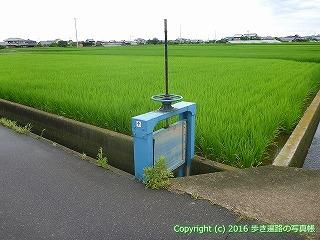 74-017香川県善通寺市