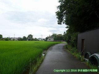 74-022香川県善通寺市