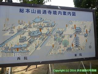 75-031香川県善通寺市