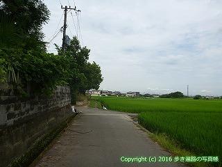 77-016香川県仲多度郡多度津町