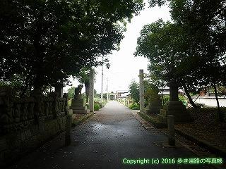 77-020香川県仲多度郡多度津町