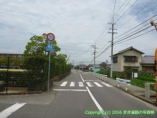 77-031香川県仲多度郡多度津町