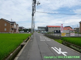 77-042香川県仲多度郡多度津町