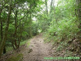 80-008香川県高松市