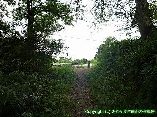 80-009香川県高松市