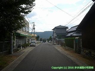 81-002香川県坂出市