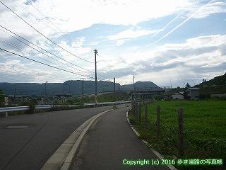 81-005香川県坂出市