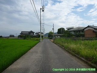 81-012香川県坂出市