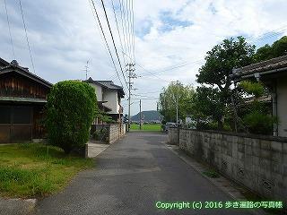 81-013香川県坂出市