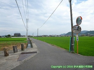 81-014香川県坂出市