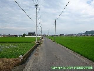 81-015香川県坂出市