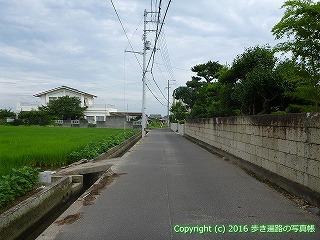 81-018香川県坂出市