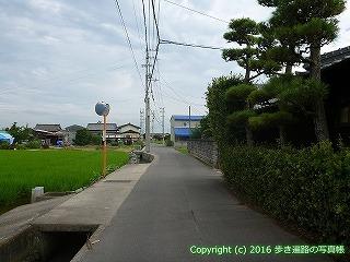 81-019香川県坂出市