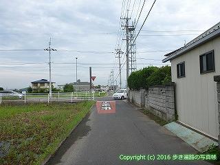 81-020香川県坂出市