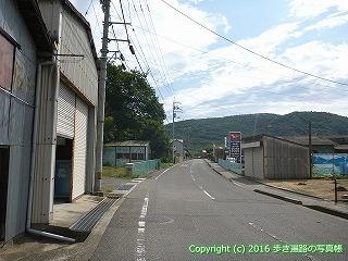 81-040香川県坂出市