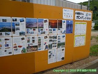81-054香川県坂出市