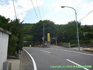 81-055香川県坂出市