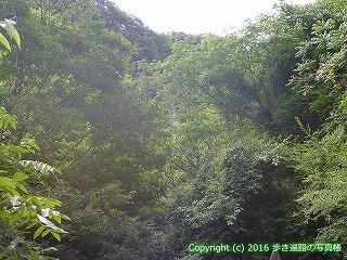 81-081香川県坂出市