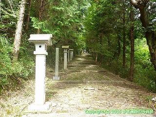 81-085香川県坂出市
