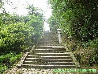 81-089香川県坂出市
