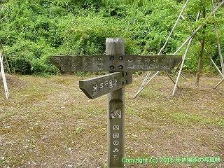 81-091香川県坂出市