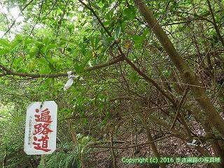 82-029香川県坂出市