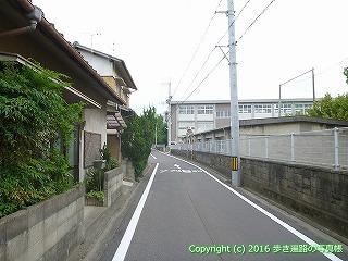 83-076香川県高松市高松南高校