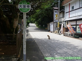 88-226香川県さぬき市